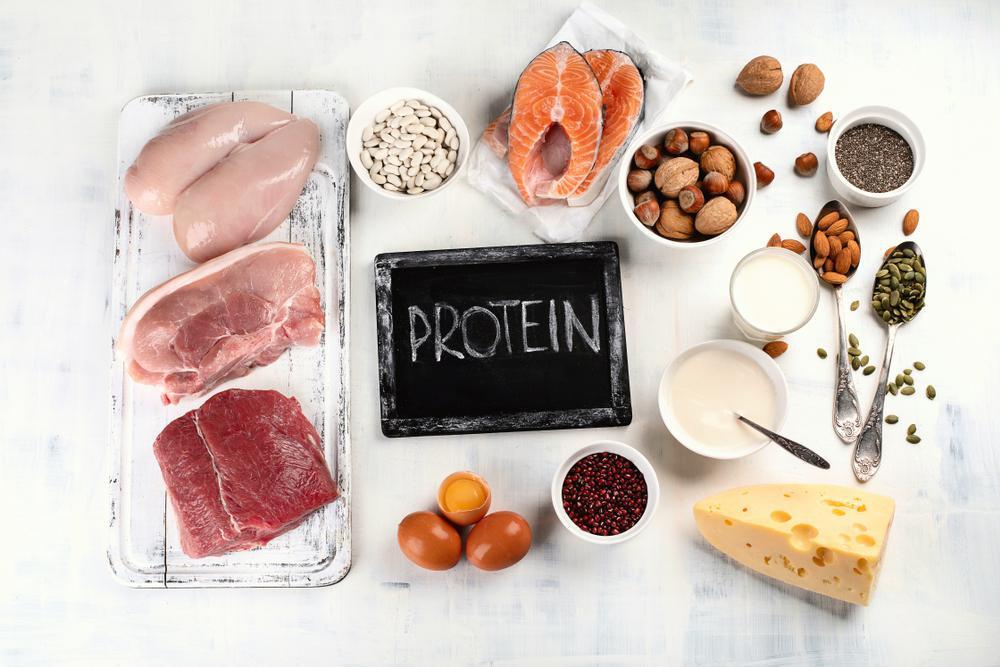 رژیم پروتئین