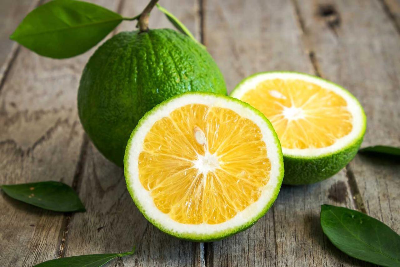 شناختی از میوه ترنج