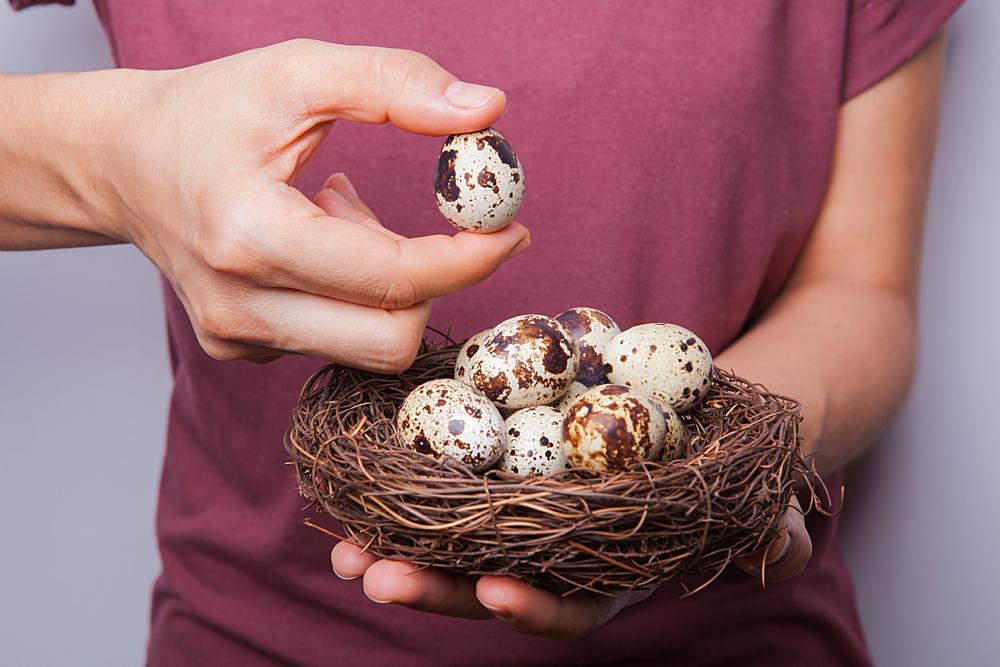 خواص تخم بلدرچین در سلامتی