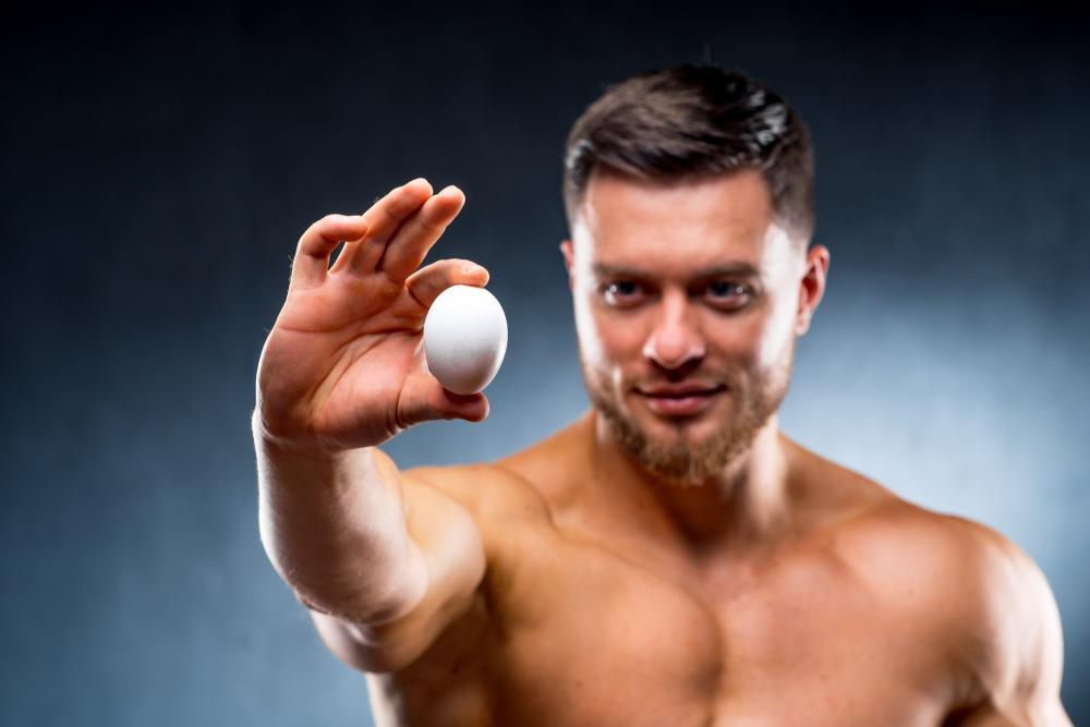 بهترین مواد غذایی پروتئین دار برای عضله سازی