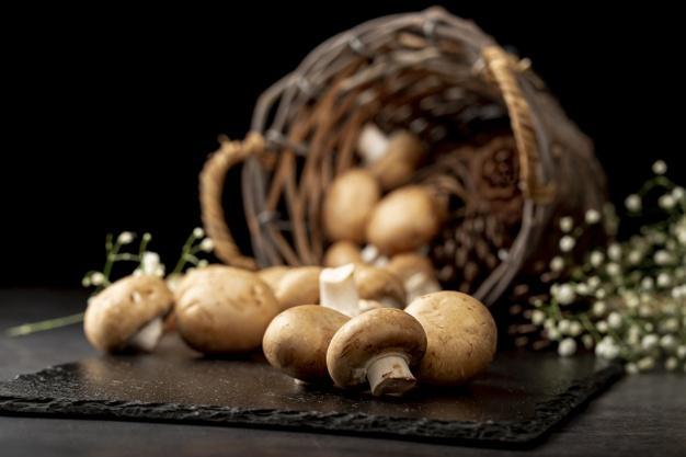 خواص قارچ برای تقویت استخوانها