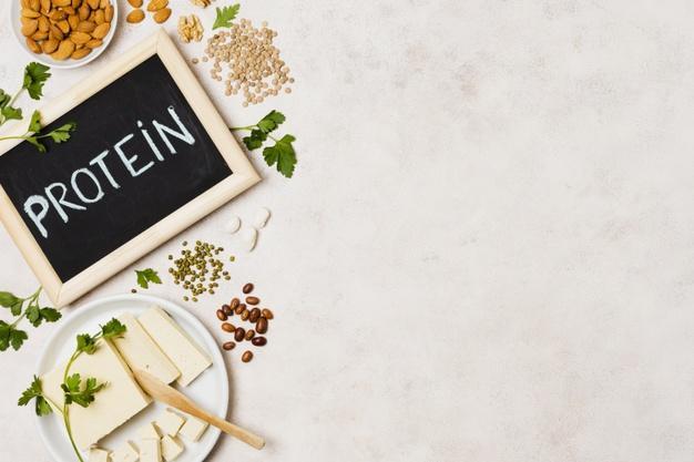 رژیم پروتئین چیست؟
