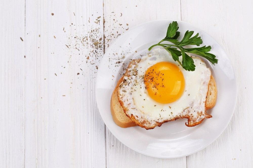 تخم مرغ منبعی عالی از پروتئین