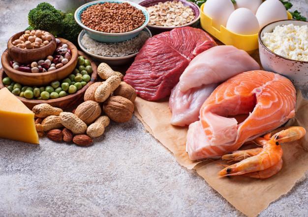 مواد غذایی پروتئینی در رژیم پروتئین