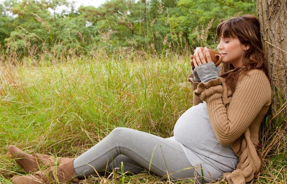 آیا در بارداری می توان گل گاوزبان خورد