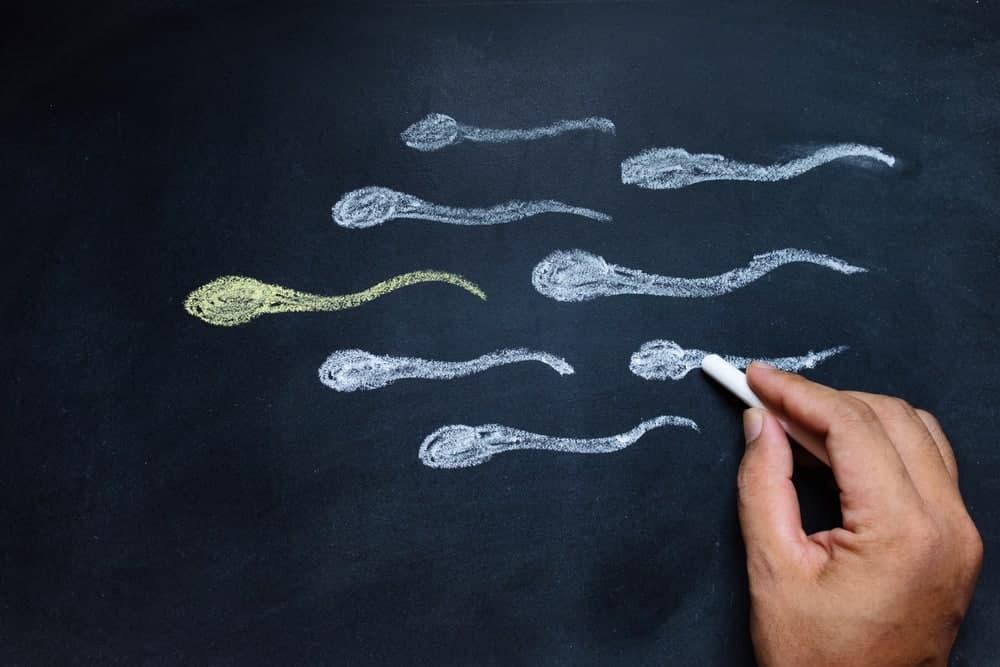 درمان طبیعی برای تقویت اسپرم