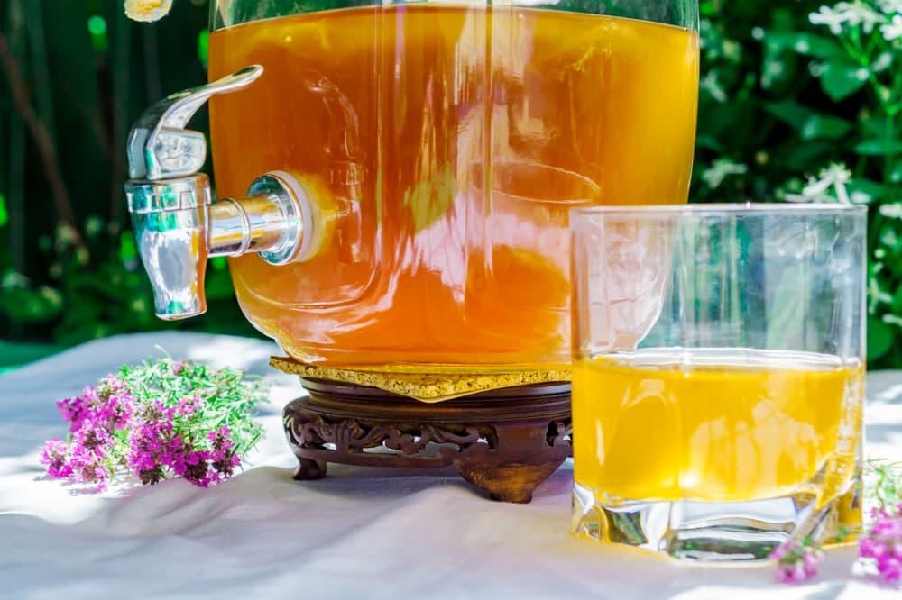 پروبیوتیک در نوشیدنی کامبوچا