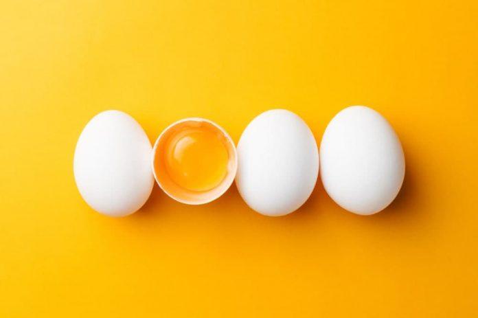 خواص تخم مرغ برای بدن